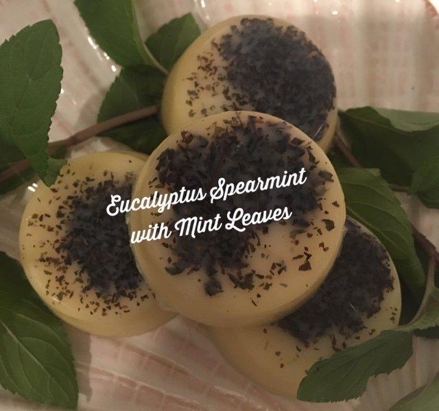 Bath Melt ~ Eucalyptus & Spearmint w/Mint Leaves ~ Four Melts - 4.3 total oz.
