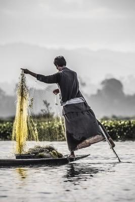 Filet jaune - Myanmar 2017