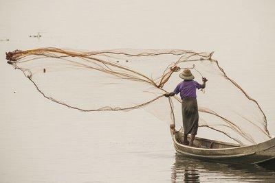 Le filet - Myanmar 2017