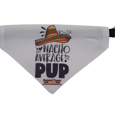 """Nacho average pup"" bandana M"