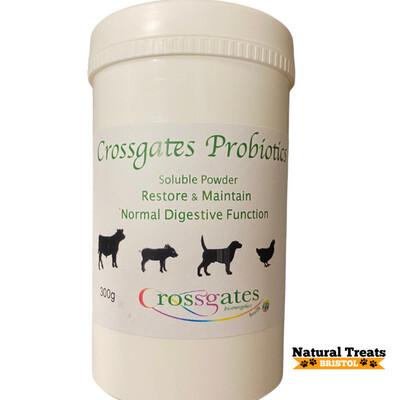 Probiotics 300g