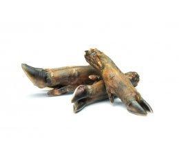 Wild Boar Trotter x 2