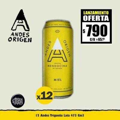 LANZAMIENTO - 12 Latas Andes Origen MIEL Lata 473Cm3