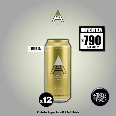 12 Latas Andes Origen Rubia 473Cm3. Opción Express