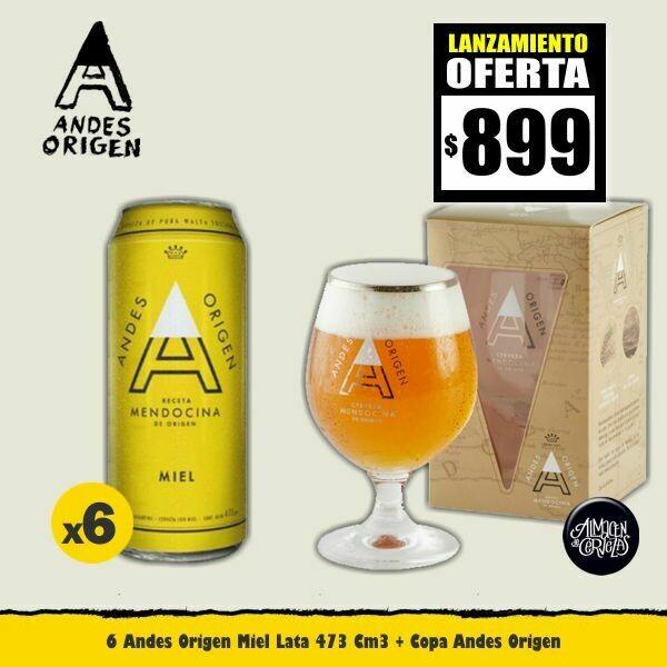 6 ANDES Origen Miel Lata 473Cm3 + 1 Copa Andes