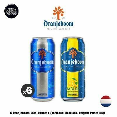 6 Oranjeboom Lata 500Cm3