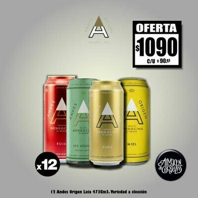 OFERTA - 12 Andes Origen Lata 473 Cm3 - Opción Express