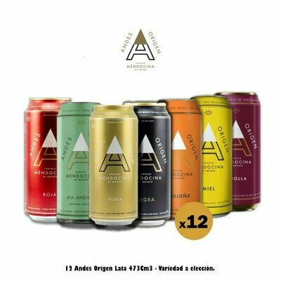 12 Andes Origen Lata 473 Cm3 - Opción Express