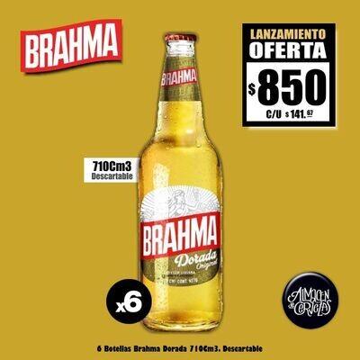 LANZAMIENTO - Brahma Dorada 710Cm3 x 6. Envío GRATIS Express
