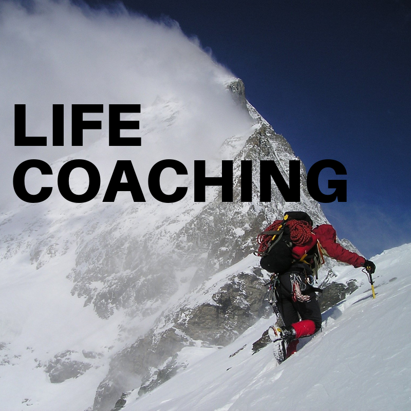 (3) Life Coaching Session