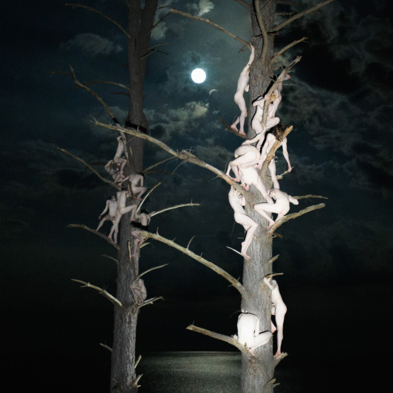 Stillness of Night, Totality Approaches (30x30cm) Archival Art Print
