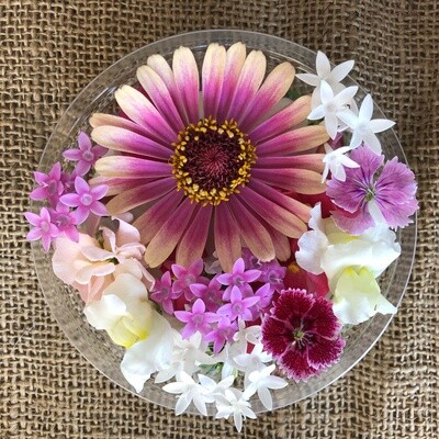 Edible flowers - Pink Mix *Order by Tuesday for delivery same week