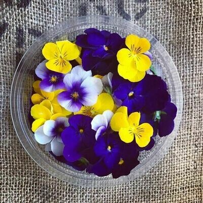 Edible - Violas by Colour *Order by Tuesday for delivery same week