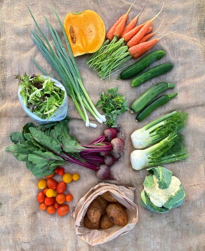 Casual/Trial Vegetable box - Order by Tuesday Evening