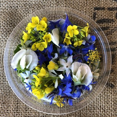 Savoury mix Edible flowers *Order by Tuesday for delivery same week