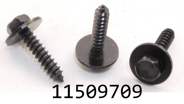 GM 11509709