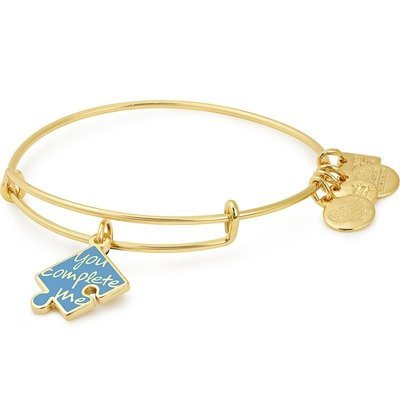 You Complete Me - ALEX AND ANI Charm Bangle