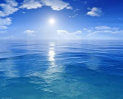 Blue contemplating