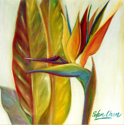 Bird of Paradise - Limited edition print