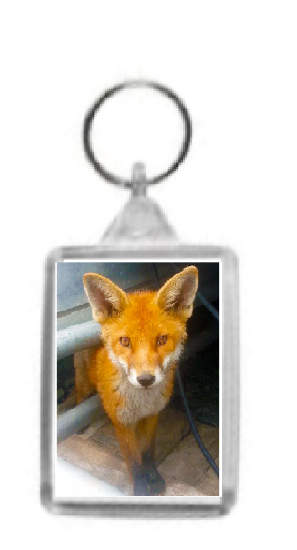 Doubled Sided Fox Keyring