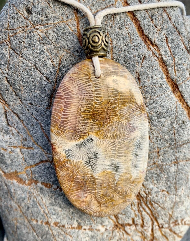 «Tout est relié» corail fossilisé