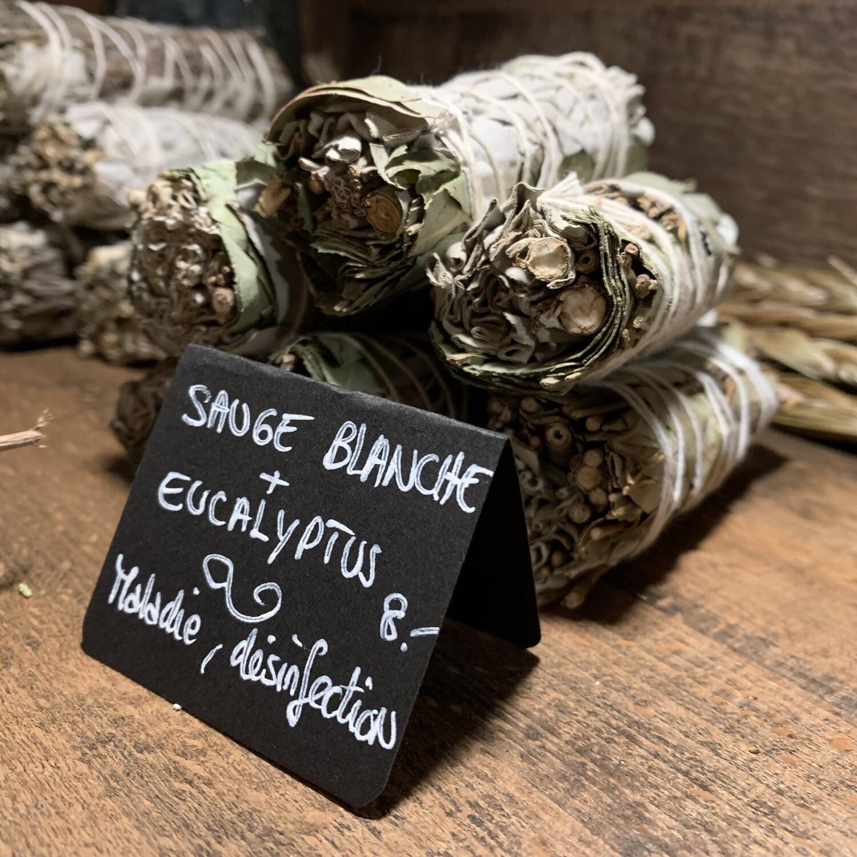 Sauge blanche + eucalyptus (Petit)