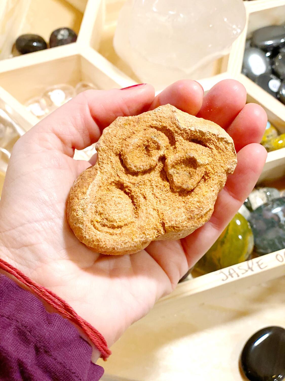 Stromatolith, pierre des origines