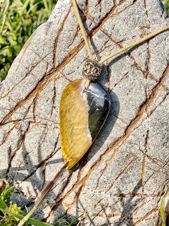 «J'accepte de me libérer» Fossile de palmier
