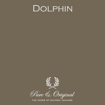 Dolphin Licetto