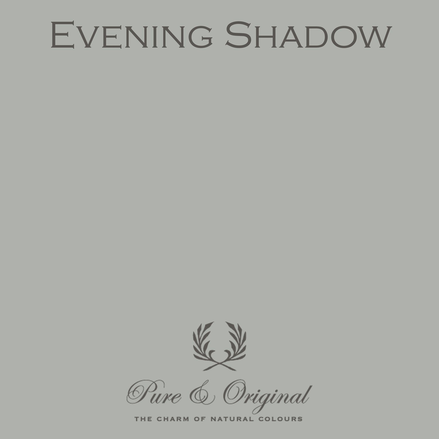 Evening Shadow Licetto