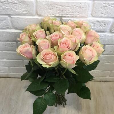 """Букет из 19 роз """"Фрутетто"""" 50 см высотой"""