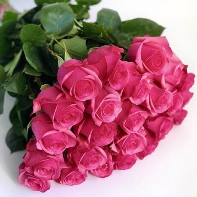 """Букет из 25 роз """"Пинк флойд"""" 60 см высотой"""