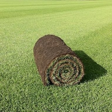 Family Lawn Turf  -  FROM £2.94 per m² NW-Turf-FLT