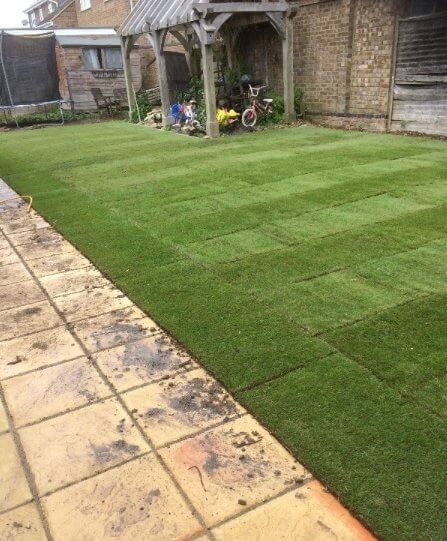 Family Lawn Turf  -  FROM £2.94 per m²