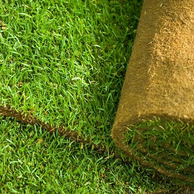 Lawn Master Turf  -  FROM £2.75 per m2* NW-Turf-LMT