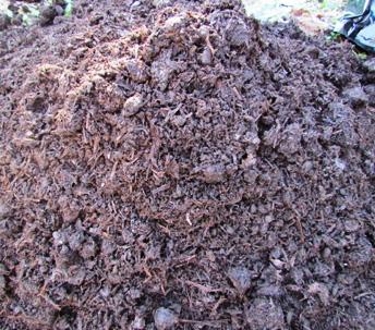 Mushroom Compost & Manure Mix CP-ARM