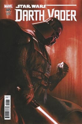 STAR WARS DARTH VADER #25 DELLOTTO VARIANT  HIGH GRADE