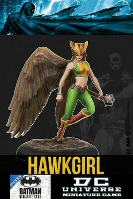 HAWKGIRL KNIGHTMODELS