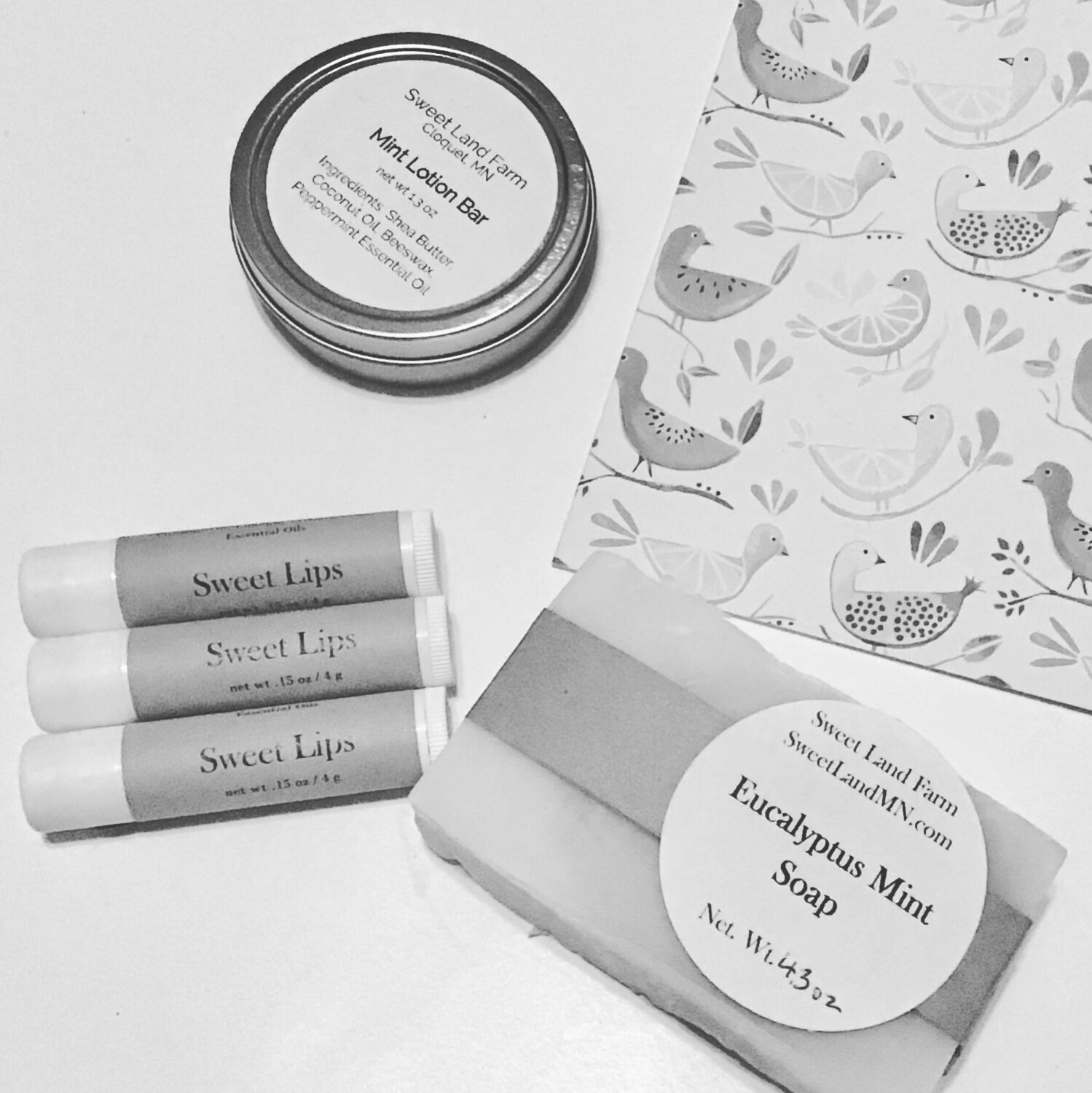 Mint Everything Gift Set