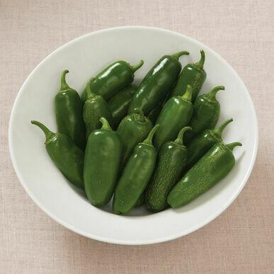 Pre-Order Pepper - Early Jalapeño