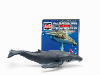 Tonies How & Why Whales and Dolphins
