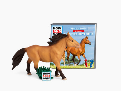 Tonies How & Why Fabulous Horses