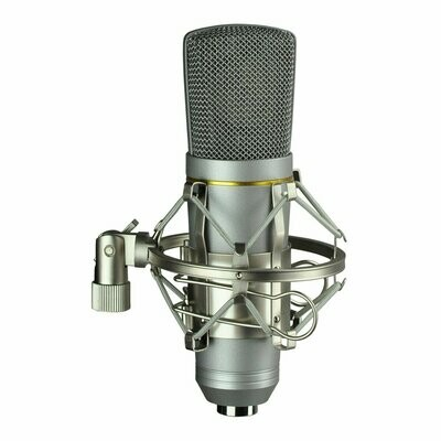 Microphone Large Diaphram USB