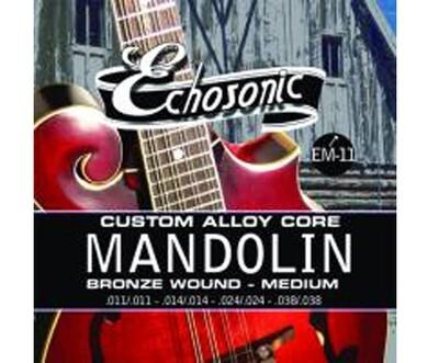 Mandolin Strings 11-38