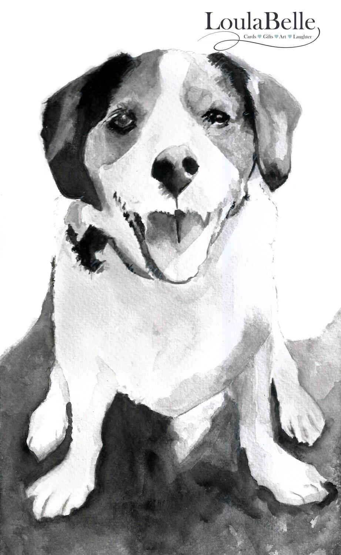 Black and White Watercolour Pet portraits