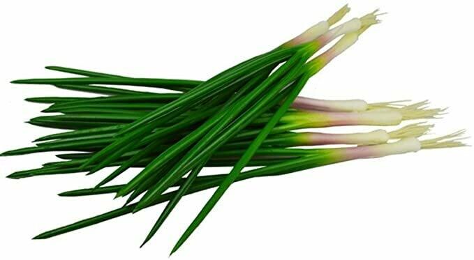 Scallions - Cebollina - Cebolinha- Oignons Verts  (o)