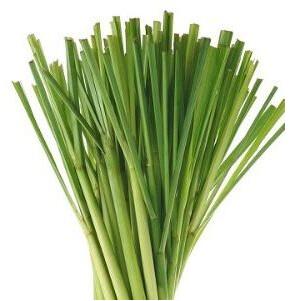 Hojas de Hierba de LImon - Lemongrass grees - Capim Santo - Lemongrass (o) (maso de 1/3 Libra)