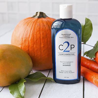 Clear 2 Perfection Shampoo
