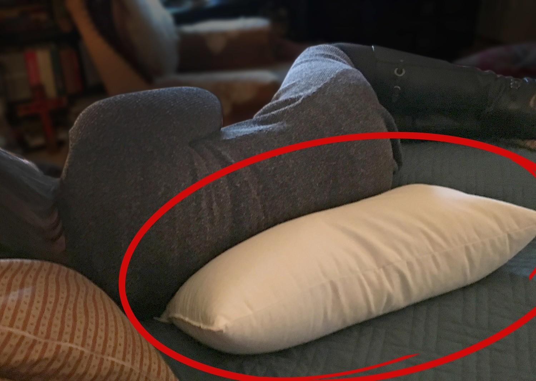 FULLBACK — Buckwheat Therapy Body Pillow