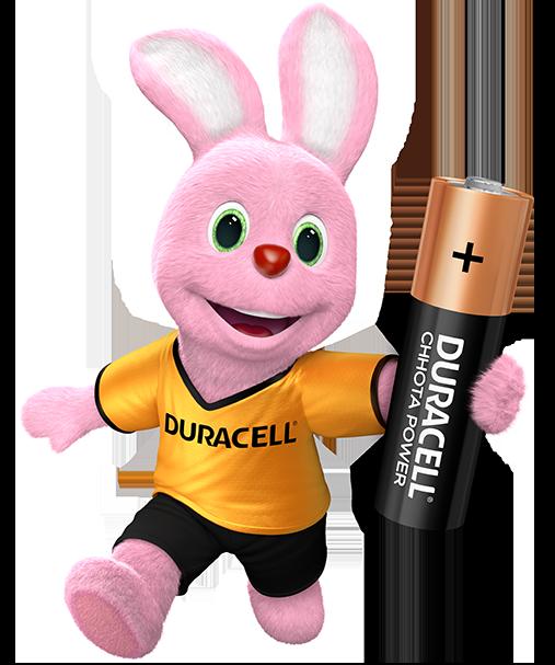 Duracell Chhota Power AA, 1 Batteries
